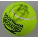 Novak Djokovic Hand Signed Tennis Ball + Proof 2