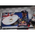 "Daniel Ricciardo Hand Signed HUGE Poster Size 20"" x 30""  Lab Quality  Photo 3 *MINOR DAMAGE*"