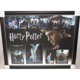 HARRY POTTER  Daniel Radcliffe &  Ralpf Fiennes Hand Signed & Framed Photo