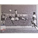 PELE  Hand Signed HUGE 16'x20' Photo  + PSA DNA COA